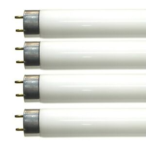 4 x 24 Watt T5 Fluorescent Tubes Cool White 24w for Cupboard Strip Ceiling Light