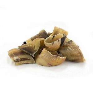 British Dried Empty Beef Cow Hooves x50 For Dogs, 100% Natural Treats, Long Last