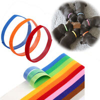 12 COLORS Identification Whelping ID Collars Newborn Puppy Kitten Pet Dog Band