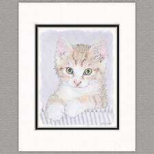 Yellow Kitten Cat Original Art Print 8x10 Matted to 11x14