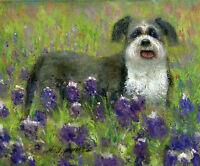 "Shih Tzu Dog with Wild Flowers 8""x10"" Original Oil on canvas HALL GROAT II"