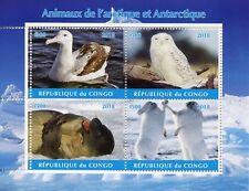 Congo 2018 CTO Arctic & Antarctic Animals 4v M/S II Owls Seals Birds Stamps