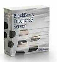 BlackBerry Enterprise Server Client Access License - ( v. 4.0 ) - licence - 1...