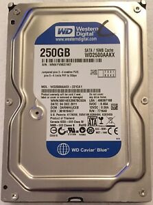 """3.5""""WD Blue hard drive 250GB Tested Full Working Condition for Desktop PC"""