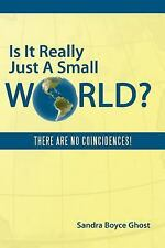Is It Really Just a Small World? : There Are No Coincidences! by Sandra Boyce...