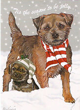 Border Terrier Box of 10 Christmas Cards