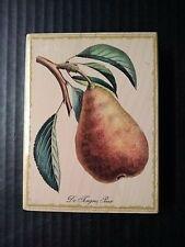 Rubber Stampede Stamp De Tongres Pear Fruit Tree 2000