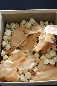 "RARE 48 PCS. LOT DEADSTOCK 1930'S DARK CREAM ORNATE  BUTTONS 3/4"" DIAMETER"