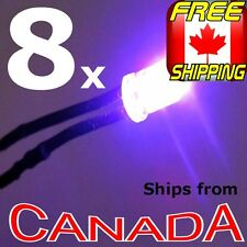 8x Ultra Violet Purple (UV - Blacklight) 5mm Single LED, pre-wired for 12v