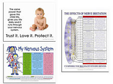 3 Chiropractic Posters