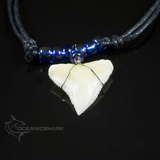REAL SHARK TOOTH NECKLACE NEON BLUE ELECTRIC GLASS COLOUR BEADED CORD NL  C1