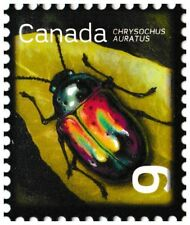 Canada 2410 Beneficial Insects Dogbane Beetle 9c single (1 stamp) MNH 2010