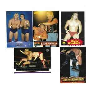 TOPPS WWE WCW BORN N SWEETWATER TEXAS 5 BARRY WINDHAM WRESTLING CARDS NICE MIX