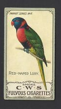 CO OPERATIVE - PARROT SERIES - #8 RED NAPED LORY