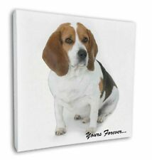 """Beagle Dog """"Yours Forever..."""" 12""""x12"""" Wall Art Canvas Decor, Pictu, AD-BEA4y-C12"""