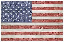 Words USA Flag Distressed Poster 12x18 inch
