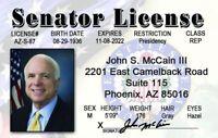 Senator John McCain Phoenix Az Arizona Drivers License novelty fake id card