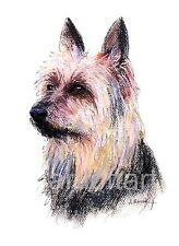 "Australian Terrier Dog Aceo Card Print by A Borcuk 2.5""x3.5"""