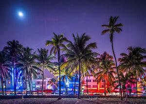 VLIES Fototapete-SOUTH BEACH MIAMI-(1271V)-Palmen Strand Neon-Licht USA Städte