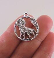 """925 Sterling silver 18"""" necklace charm WOLF HOWLING MOON FEATHER  pendant women"""