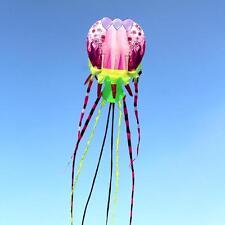 2016 Large 3D Kites models Original Software kite jellyfish painted flower Demo