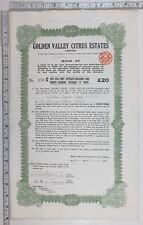 1923 Antique Share Certificat Doré Valley Agrumes Estates Limités