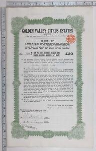1923 Antigüedad Comparte Certificado Dorado Valley Cítricos Familiares Limitados