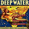 Okahumpka Deep Water Florida Mermaid Orange Fruit Crate Label Art Print