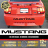 (Piano Black) FORD MUSTANG Bumper Letters Vinyl Decal Insert Sticker 1999-2004