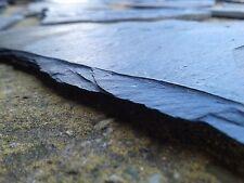 24 Schieferplatten Natur (0,99€/Stk) Aquarium 10-24cm Rückwand Felsen Leichhöle