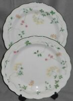 Set (2) Royal Doulton SOUTHDOWN PATTERN Dinner Plates MADE IN ENGLAND