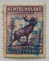 Newfoundland sc#191 used 5c SOTN SON R. B of C. St John's blue ink box cancelled