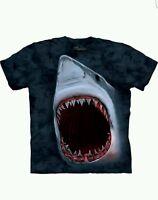 Shark Bite Aquatics T Shirt Child Unisex The Mountain
