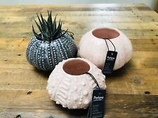 Grey Pink Sea Urchin Bud Vase Planter / Ceramic Flower Pot Retro - PARLANE