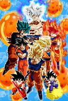 11x17 13x19 Kid Teen Adult Dragon Ball Z Super Evolution of Gohan Poster