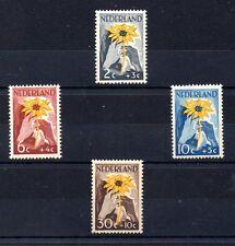 Holanda Cruz Roja serie del año 1949 (AV-891)