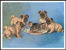 PUG PUPS AND CAT LOVELY VINTAGE IMAGE ON DOG PRINT POSTER