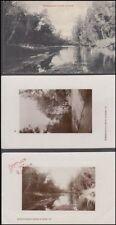 NEW ZEALAND TARANAKI ELTHAM VIEWS OF WAINGONGORA RIVER POSTCARDS (x3)