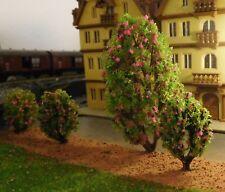 10 rosa blühende Büsche, je 5 Stück 25 und 60 mm hoch