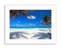 COCONUT PALMS AT DESOLATE BEACH CARIBBEAN PARADISE PHOTO Poster Canvas art