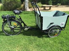 Cargo Box Bike Electric Bicycle Family Kids Trailer e bike park beach lithium