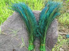 5Stk.left+5Stk right     Pfauenfedern Federn Pfauen Pfauenfeder 30-35cm grün