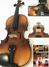 NEW 4/4 Size Violin,Despiau Bridge+Prelude Strings +Case Bow Set, Ready To Play!