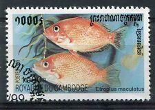 CAMBODGE - 1999, timbre 1670, POISSONS, ETROPLUS MACULATUS, oblitéré
