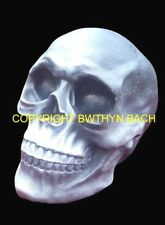 NEW DESIGN RUBBER LATEX MOULD MOULDS MOLD TO MAKE GOTHIC LIFE SIZE SKULL HEAD #4