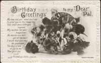 (hsj) Postcard: Birthday Greetings, Pansy, Pansies