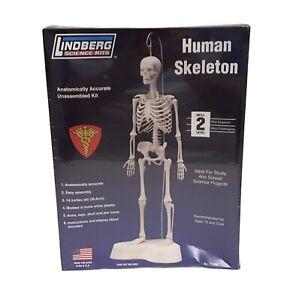 Human Skeleton Lindberg Science Kits 14″ High With Base LIN71304 Sealed