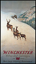 """1912 Ad PHILIP GOODWIN, Winchester, Deer, Hunting Rifle, 17""""x10"""" Canvas Art"""