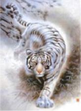 Tiger/Wolf + Eagle/Cheetah - 3D Lenticular Flip Foto 400mm X 300mm