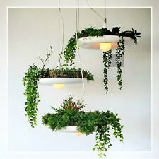 New Modern creative Babylon Garden plant pendant lights ceiling lighting fixture